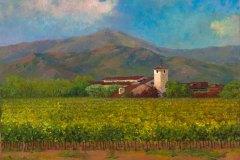 Napa Robert Mondavi Winery 14X18